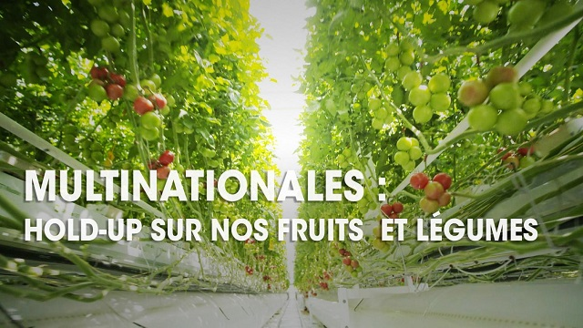 MULTINATIONALES: HOLD UP SUR NOS FRUITS ET LÉGUMES